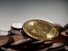 Yerli kripto para platformları
