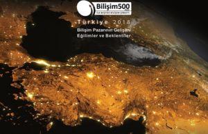 Bilişim 500 Araştırması, Bilişim Sektörü