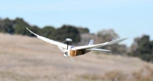 Güvercin Drone