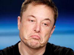 Elon Musk WhatsApp