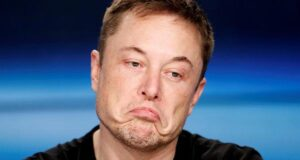 Elon Musk aptal