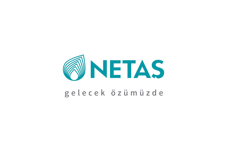 Netaş Logo