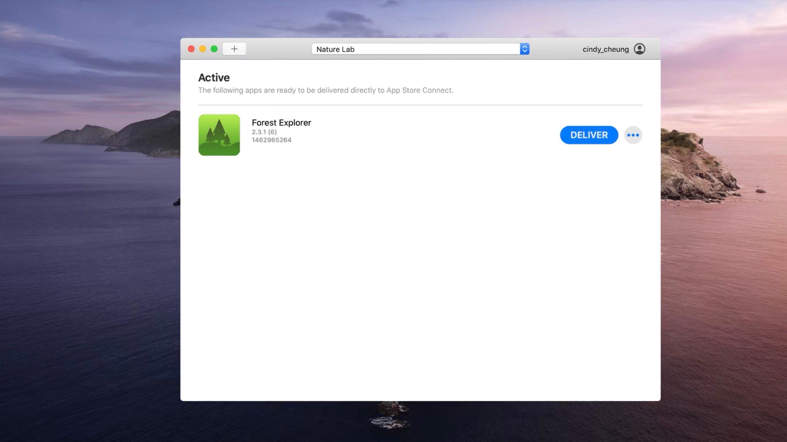 Apple Transporter nedir?
